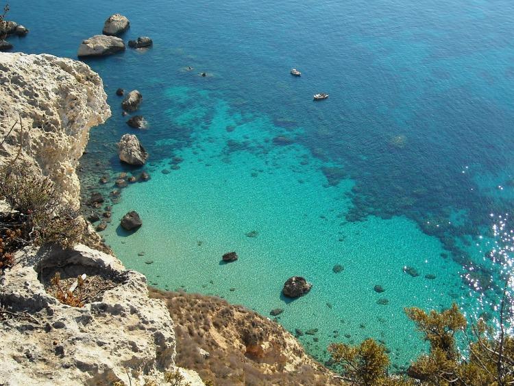 Sardinia Family Longevity