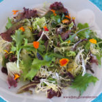 Shallot Salad Dressing with edible flowers