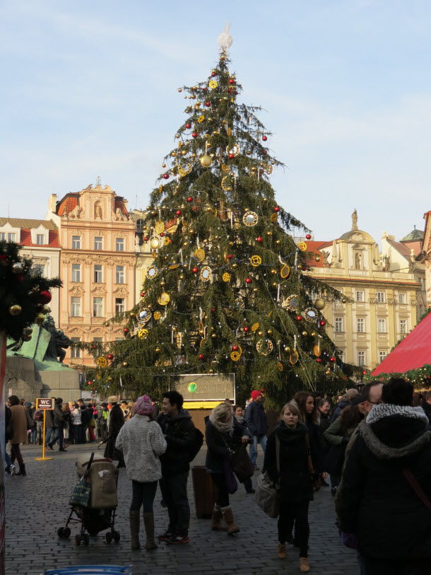 Christmas Tree in Prague - Christmas Markets Tour
