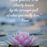 Career or Careen - Quote by Rumi