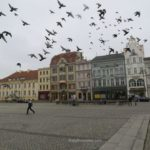 Boomer Travel | Bydgoszcz, Poland | Old Town Market Square