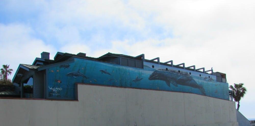 Baby Boomer Travel | California | Whaling Wall - Laguna Beach
