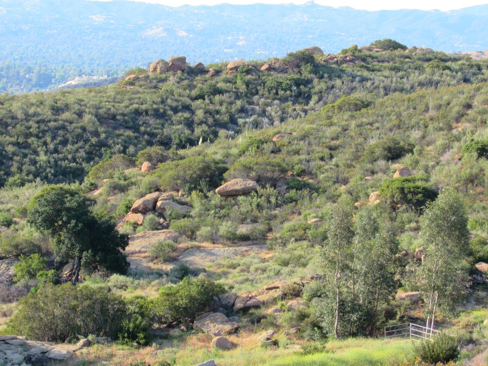 Hills overlooking Chatsworth, California