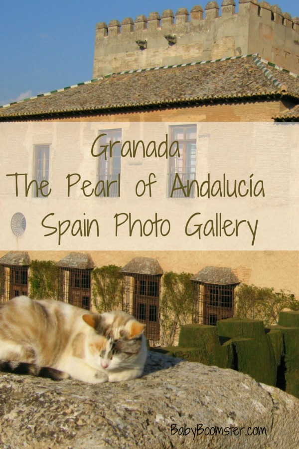 Baby Boomer Travel | Granada , Spain | The Alhambra and Cat