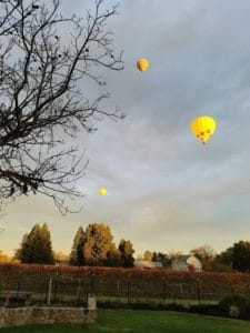 Baby Boomer Travel | Napa, California | Backyard vineyards and balloons
