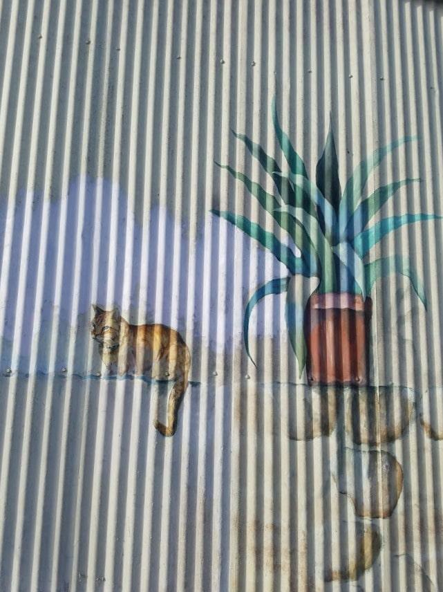 Baby Boomer Travel | Street Art | Cat on a Wall NOHO
