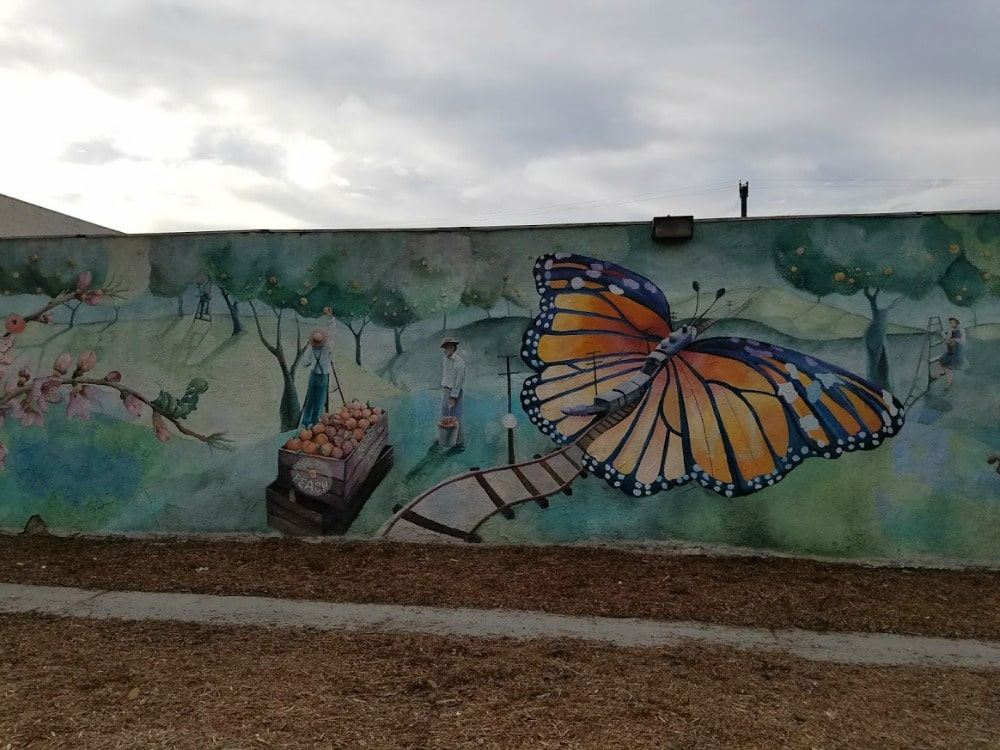 Baby Boomer Travel | Street Art | NOHO | Butterfly and Peaches