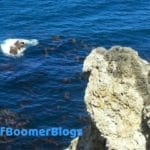 Best of Boomer Blogs: Musing about Travel – Food – and Enjoying Life