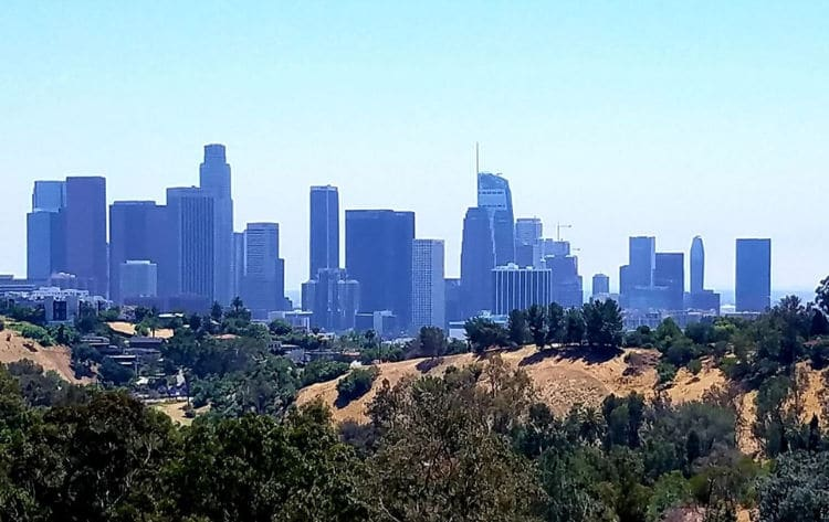 Downtown Los Angeles Skyline view from Elysian Park Angel's Point