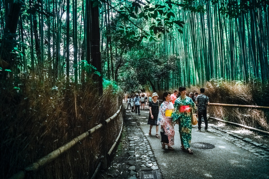 When you find yourself in Kyoto, dedicate at least one morning to take a stroll in the Arashiyama Bamboo Grove #Japan