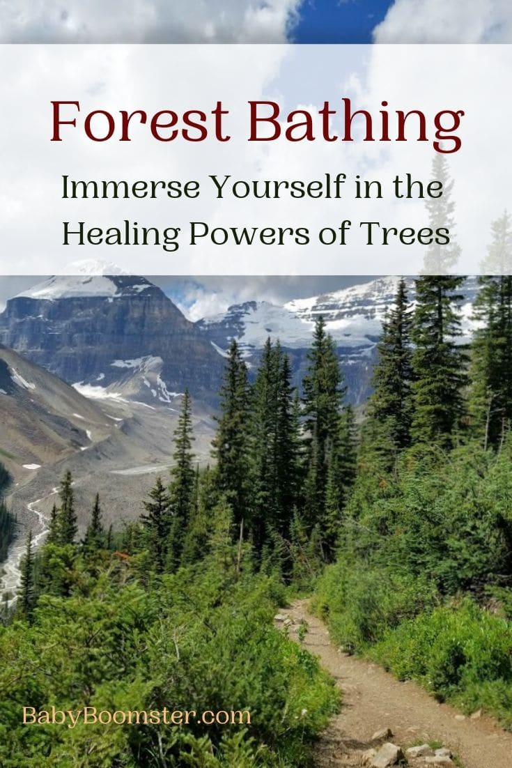 Forest Bathing - Immerse Yourself in the Healing Power of Trees - The Japanese have adopted this concept for wellness and to relieve stress especially for people who live in big cities. Walking in nature near trees and in forests is natural medicine for the soul. #forest #Canada #LakeLouise #wellness #beautyofnature #forestmedicine