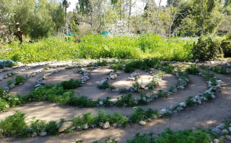 Labyrinth at Arlington park in Pasadena, California