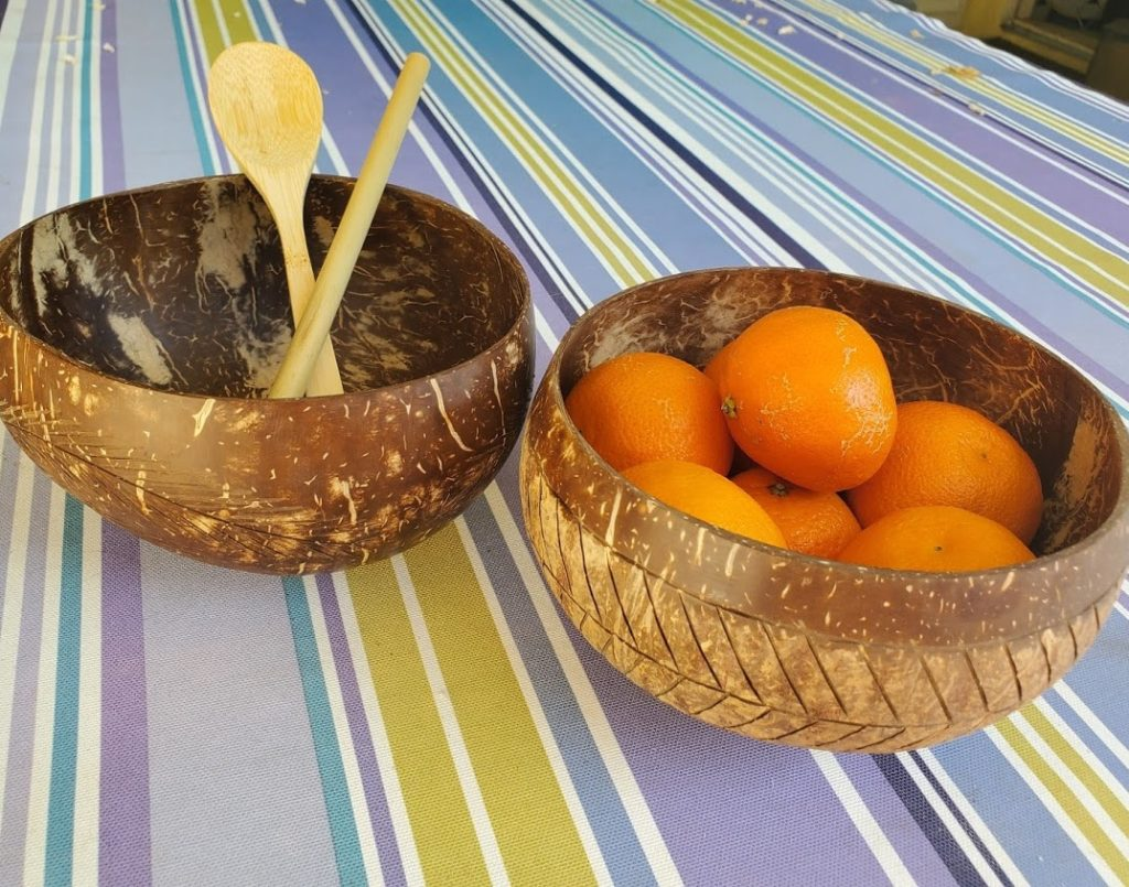 Rainforest Coconut Bowls